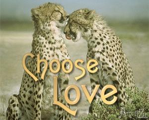 escolho paz e amor